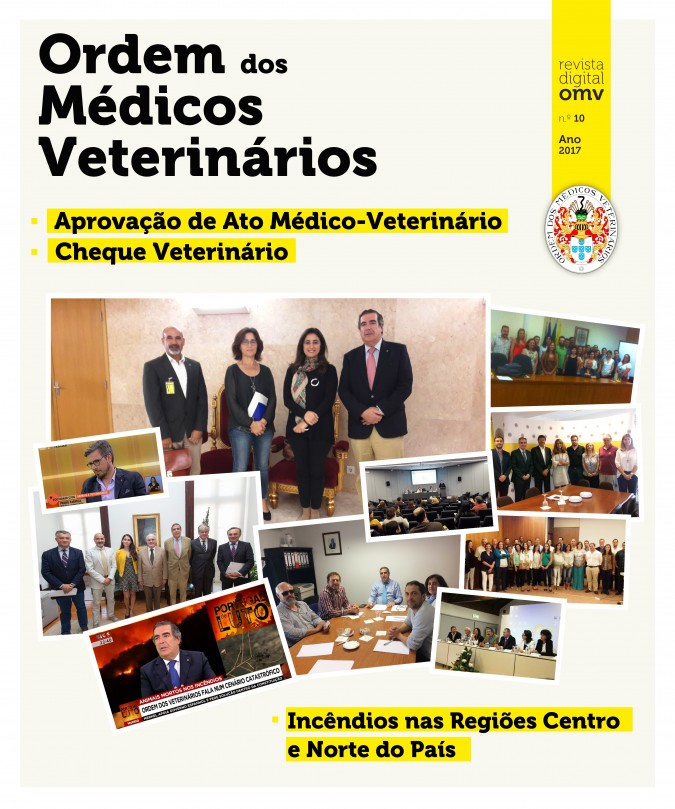 Revista Digital OMV - Ano 2017