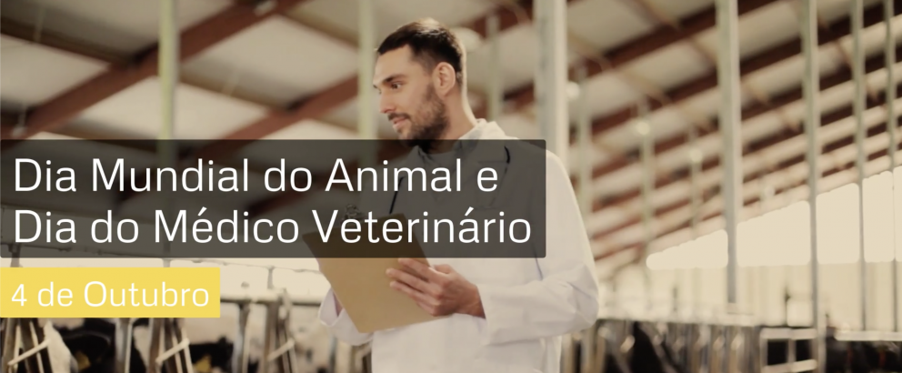 Feliz Dia do Médico Veterinário e Feliz Dia Mundial do Animal! - Vídeo